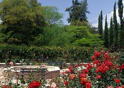 El giraldillo noches de ramad n for Jardin botanico eventos