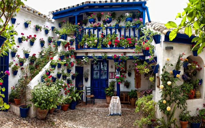 El giraldillo patios de c rdoba - Imagenes de patios andaluces ...